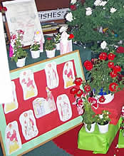Display board with St Nicholas pictures